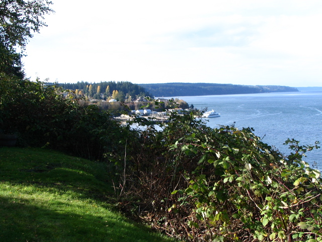 Click here - View from house looking at Camano Island across the way