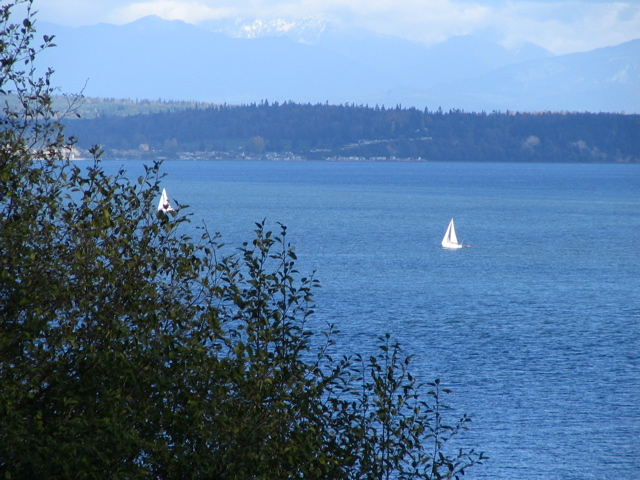 Click here - Ruby's new backyard  - Two pictures looking towards town of Langley on the Island